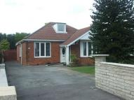 Detached Bungalow in Ganstead Lane, Bilton...