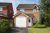 3 bed Detached property to rent in Chatteris Park...