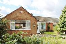 Detached Bungalow to rent in Wellfield Road, Culcheth...