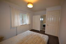 Bentley Street Ground Flat to rent