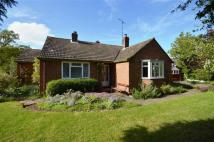 Weobley Detached Bungalow for sale