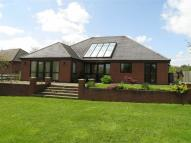 Detached Bungalow in Kington