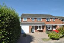 3 bedroom semi detached house for sale in Vernon Grove...