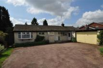 Detached Bungalow for sale in Foredraught Lane...