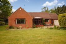 Detached Bungalow for sale in Ewing Close, Reepham...