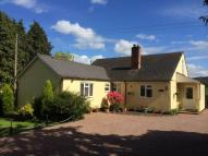 3 bed Detached Bungalow for sale in Callow, Hereford