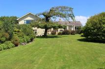 5 bed Detached Bungalow for sale in BANTHAM