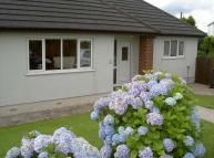 Detached Bungalow to rent in MORELEIGH