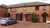 2 bed Terraced home to rent in Woolrich Gardens...
