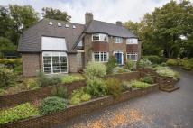 4 bed Detached home in Court Hill, Chipstead