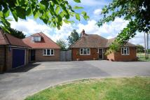 Detached house for sale in Brishing Lane...