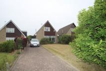 Detached Bungalow in Ketton Avenue, Norton...
