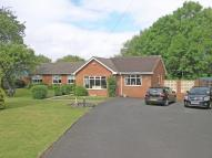 Detached Bungalow in BRIERLEY HILL...