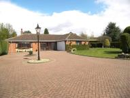 Detached Bungalow for sale in Alderhithe Grove...