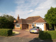 3 bed Detached Bungalow for sale in Wavenham Close...
