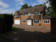 Detached house for sale in Tamworth Road, Four Oaks...
