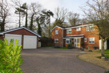 4 bed Detached house for sale in Blackwood Road, Dosthill...