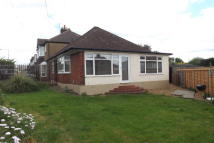 Bungalow to rent in Loughton