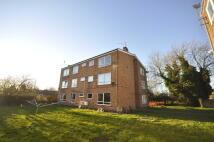 Apartment to rent in Shelmory Close, Allenton...