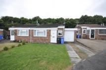 Semi-Detached Bungalow to rent in Malcolm Grove...