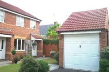 semi detached house to rent in Thistle Grove, Chellaston