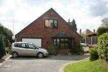 Detached Bungalow for sale in Rowan Tree The Vale...