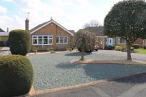 Bungalow for sale in Hermitage Walk, Ilkeston...