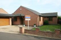 3 bed Detached Bungalow in Jeffries Close, Ilkeston...
