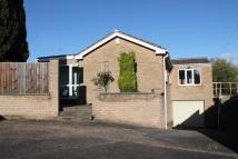 Detached Bungalow for sale in Wardlow Road, Ilkeston...