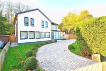 3 bed Detached house for sale in Ravensbourne Avenue...