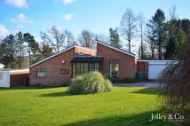 Detached Bungalow for sale in 17 Lymewood Drive...