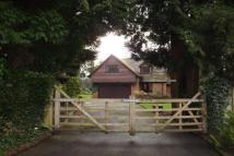 5 bedroom Detached home to rent in Grayshott Hindhead