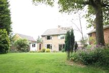 4 bed property to rent in Hindhead