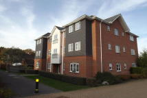 2 bed Apartment to rent in Doctors Acre, Hook, RG27