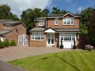 Detached home to rent in CLOVE MILL WYND...