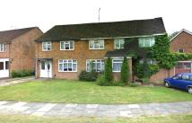 3 bed semi detached property to rent in Stafford Road, Crawley...