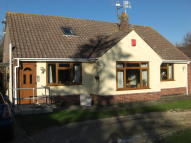 Detached Bungalow to rent in Smallfield Road, Horne...