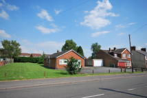 3 bed Detached Bungalow for sale in Swannington Road...