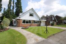 3 bedroom Link Detached House for sale in Churwell Avenue...