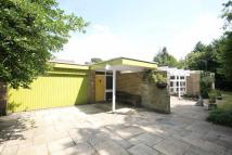 Detached Bungalow in Laurel End Lane...