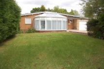 3 bed Detached Bungalow in Karellia, The Drive...
