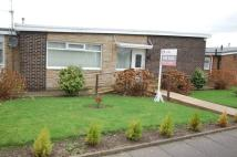 Semi-Detached Bungalow in Mitchell Avenue...
