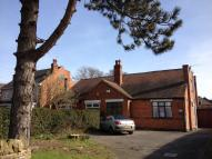 Semi-Detached Bungalow to rent in Stenson Road, Sunnyhill...