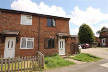 semi detached home to rent in Damien Close