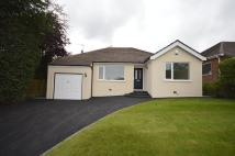 Bungalow to rent in Crossfield Grove...