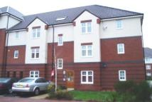 2 bed Flat in Causton Gardens...