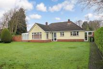 3 bed Detached Bungalow for sale in Hook Park Road, Warsash...