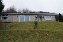3 bedroom Detached Bungalow for sale in Beechwood Bungalow....