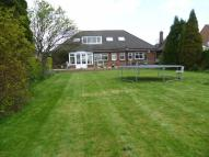 Detached Bungalow for sale in Green Lane, Ashington