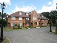Flat for sale in Chestnut Avenue...